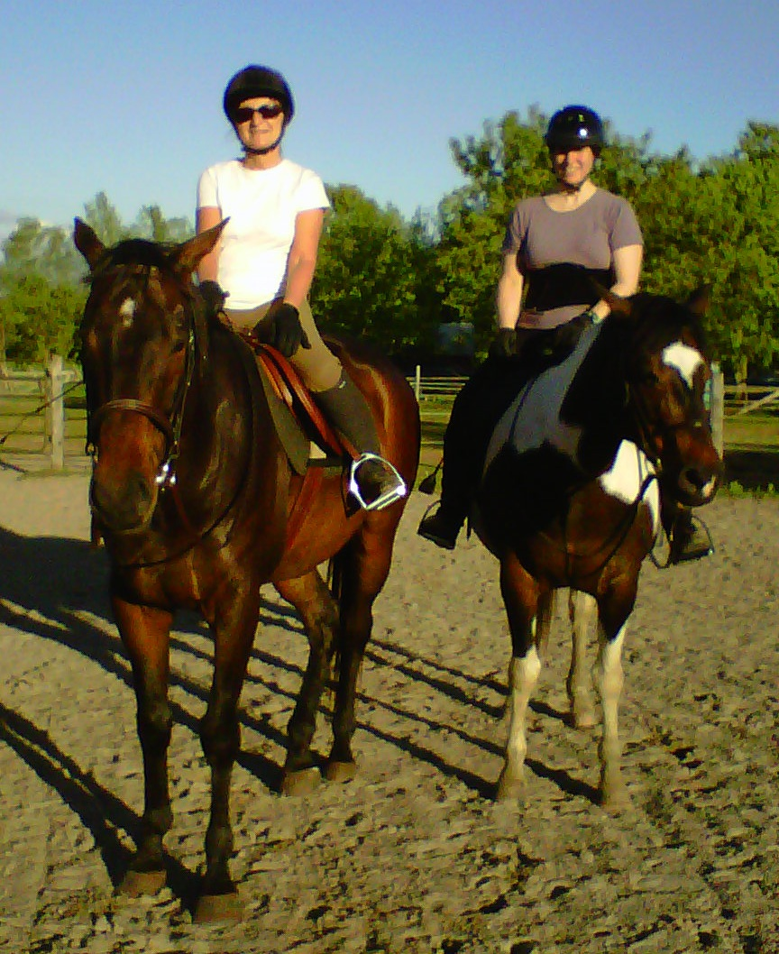 Kingston horse riding at Raspberry Ridge