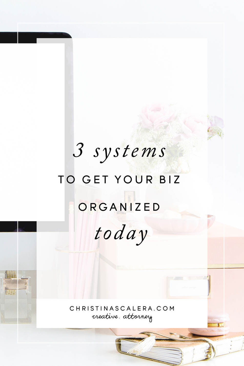 3 Systems to get your business organized today!