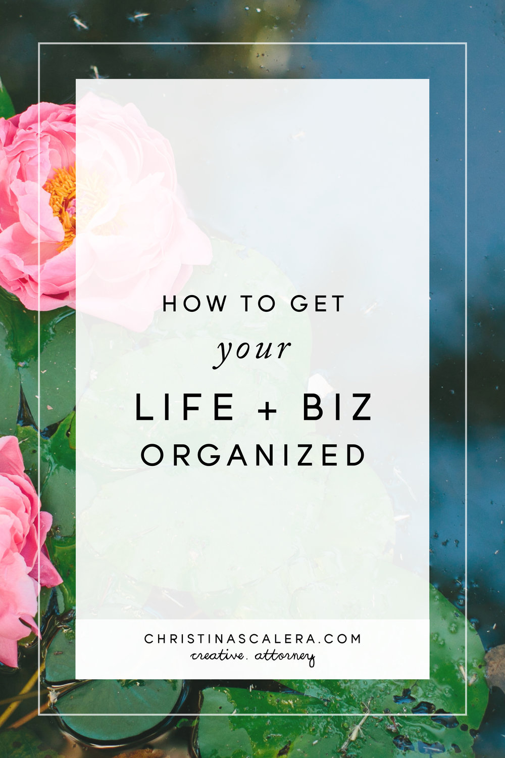 How to get your life and business organized, once and for all!
