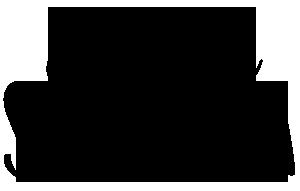 small logo CS.png