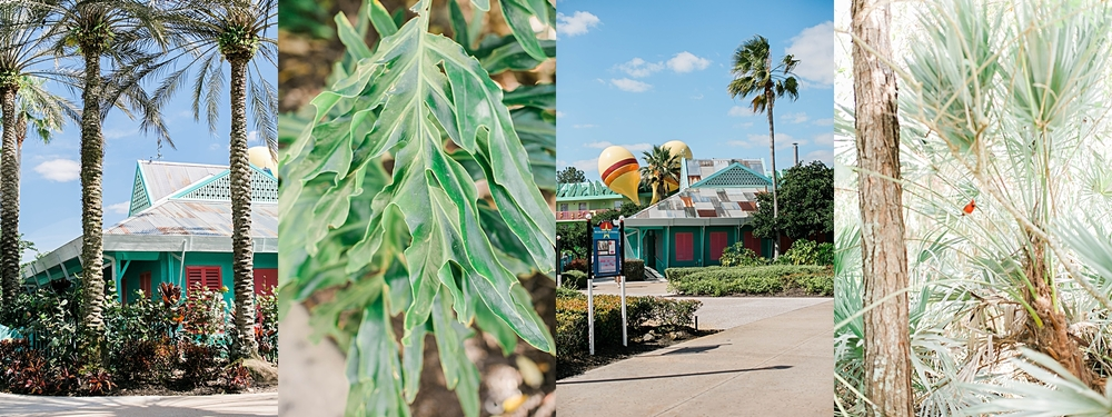 disney-world-orland-florida-photographer-jbmariephotography