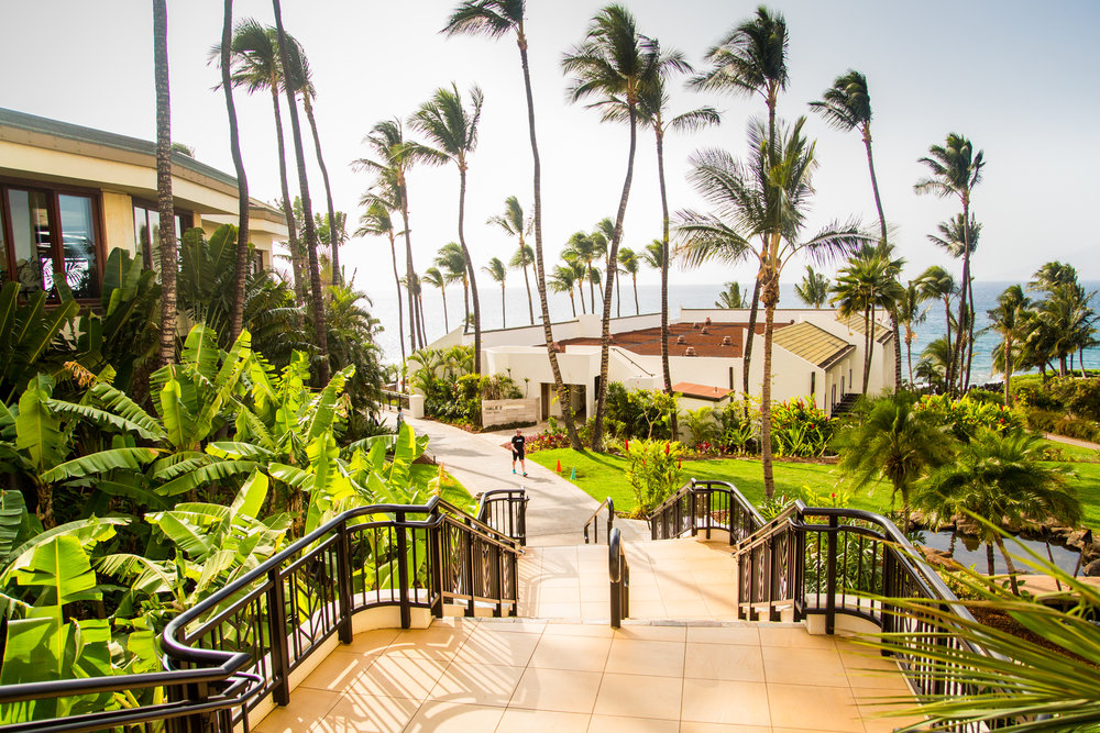 BM-Hawaii-March2016-7.jpg
