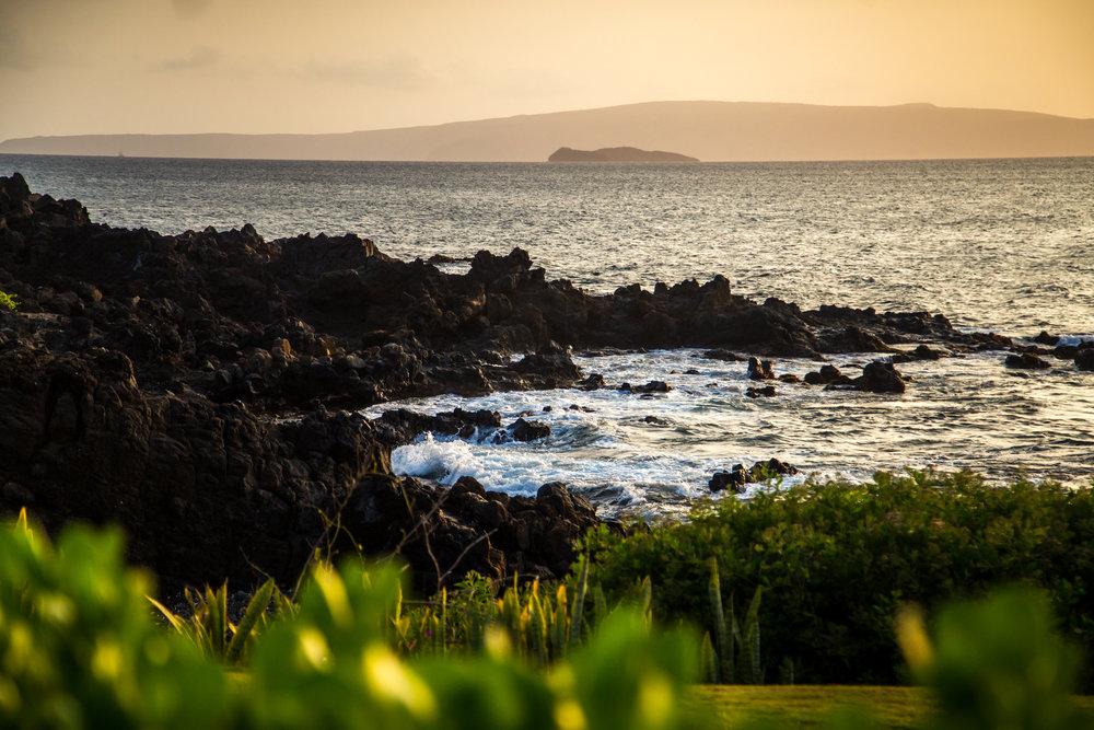 BM-Hawaii-March2016-51.jpg