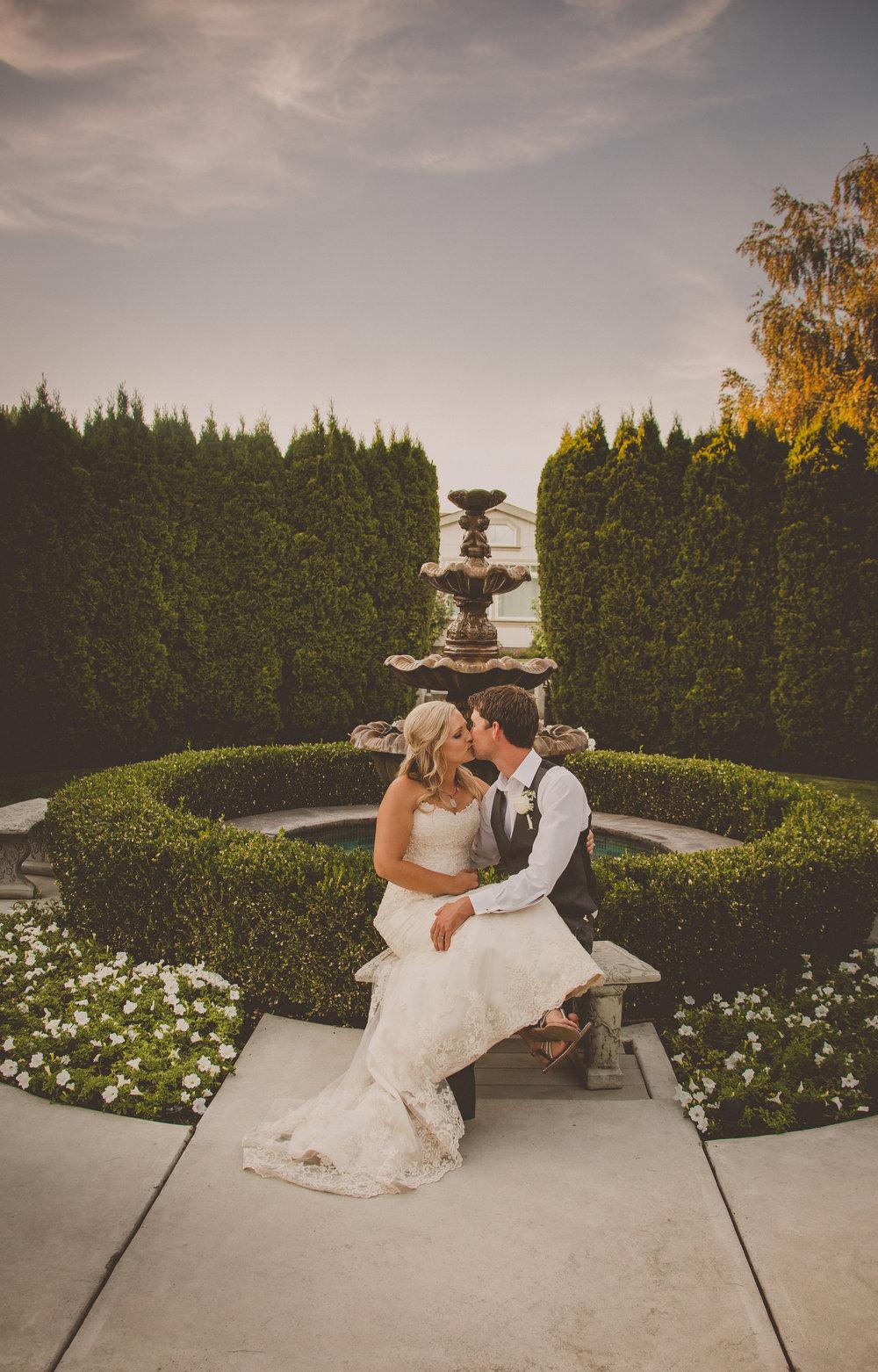 Purple Pineapple Photography — Weddings + Engagements
