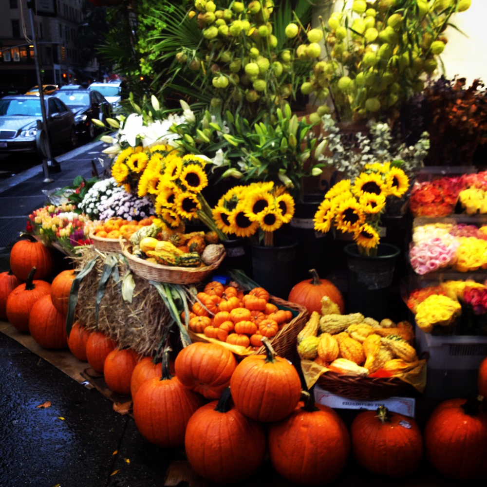 Autumn Colours - New York City - October 2014