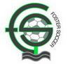 FosterSoccer Logo 1 3pct.jpg
