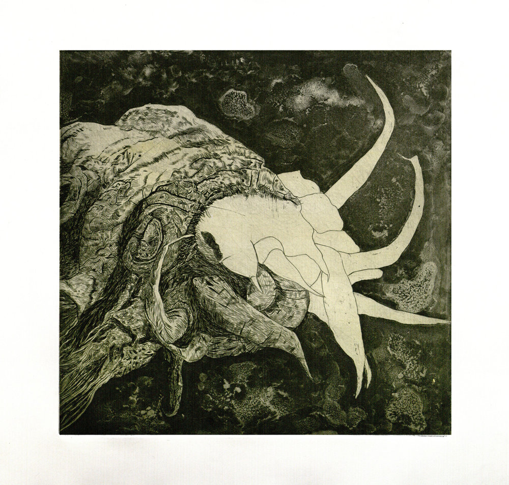 Cunning Creature-- Variant