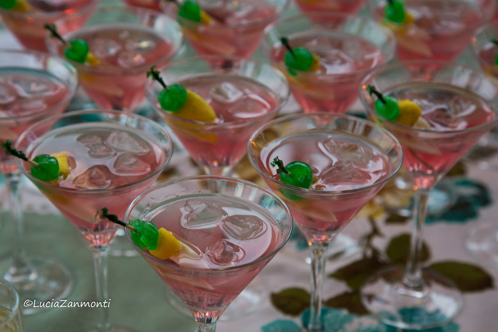cocktail wairarapa photography.jpg
