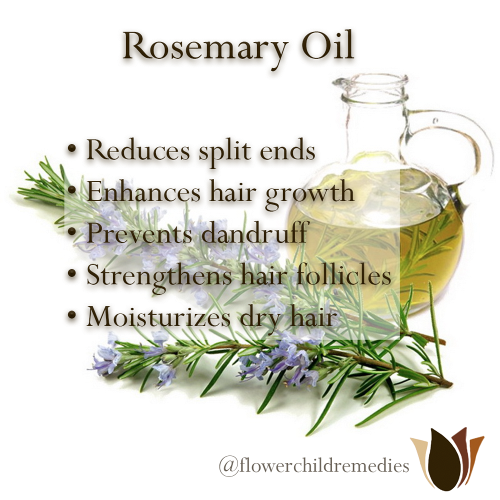 Rosemary Oil Info.png