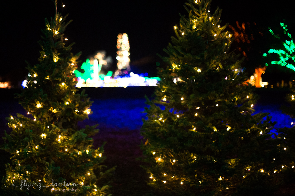 trail_of_lights_austin_1217_3.jpg
