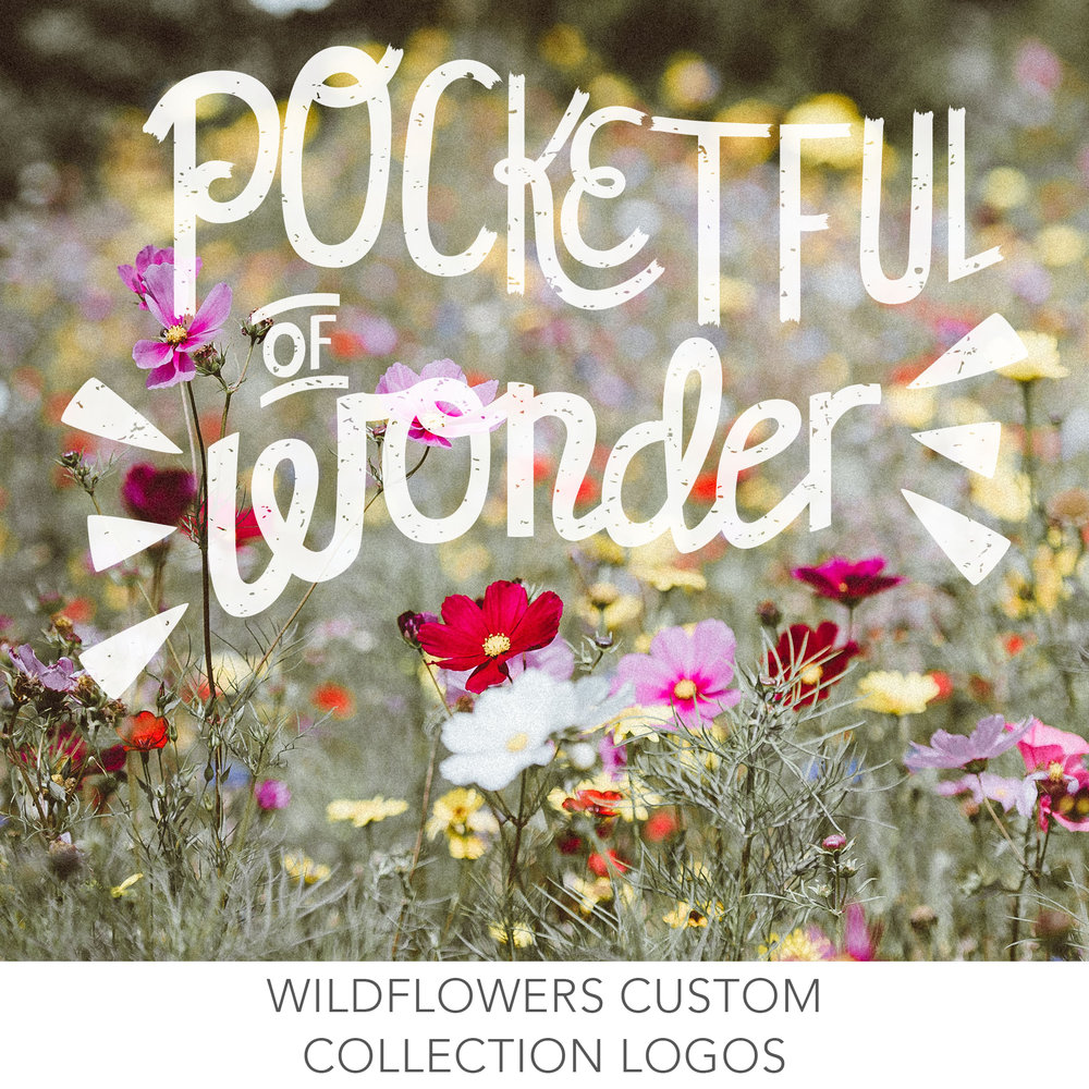 Collection Logos for Wildflowers Clothing Hand Lettered by Erin Reas graphic designer based in Austin TX