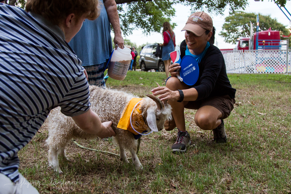 Baby goat being pet at Hillfest 2018 on St. Edward's University campus. Event photography by Erin Reas of Flying Lantern Photography