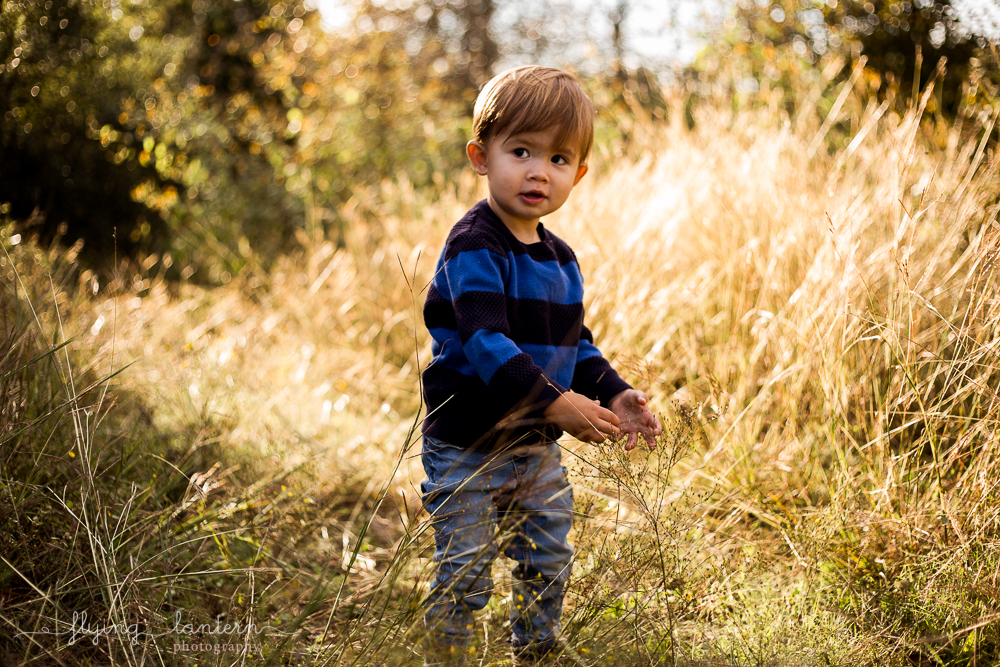 little kid during family session exploring. photo by erin reas of flying lantern photography based in austin, tx
