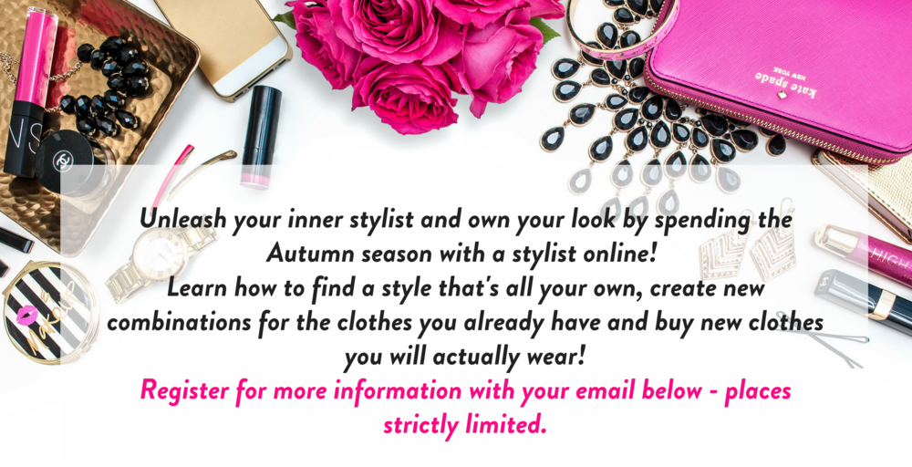 Own Your style sales blurb for form png.png
