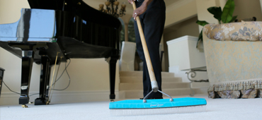 Carpet Cleanning Oakland | New Life Carpet Care | Oakland | Carpet Grooming