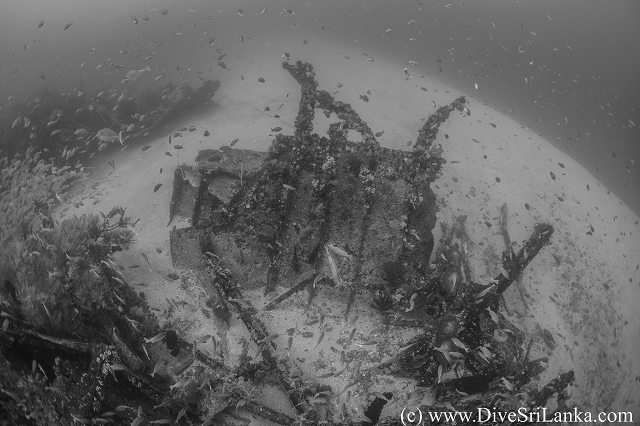 HMS Hollyhock amidships port side debris-small.png
