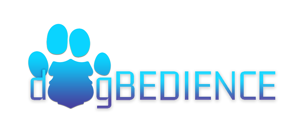 dOgBEDIENCE K9 Training | Reston Top Dog Trainer | 571-437-4200