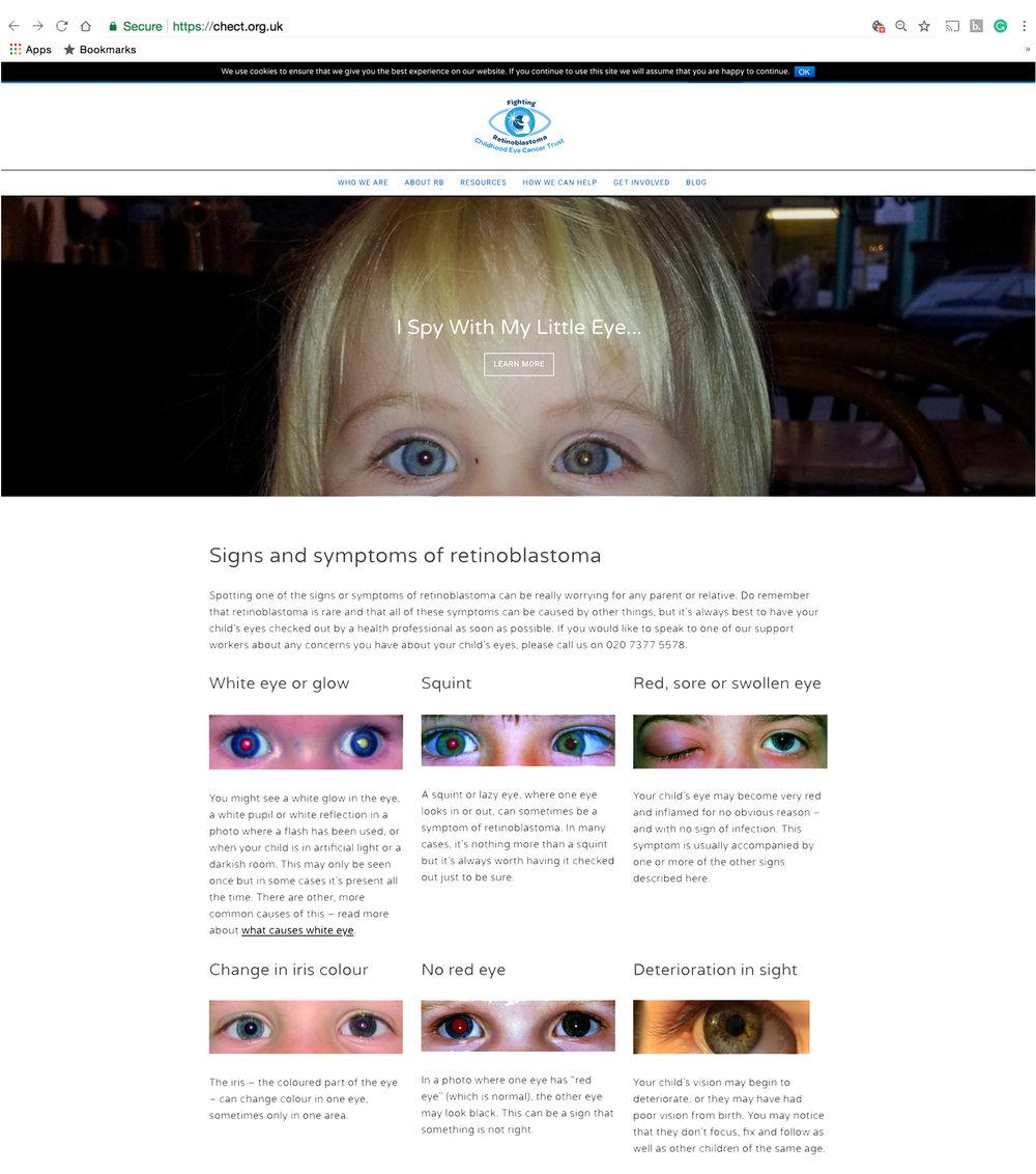 Chect website2.jpg