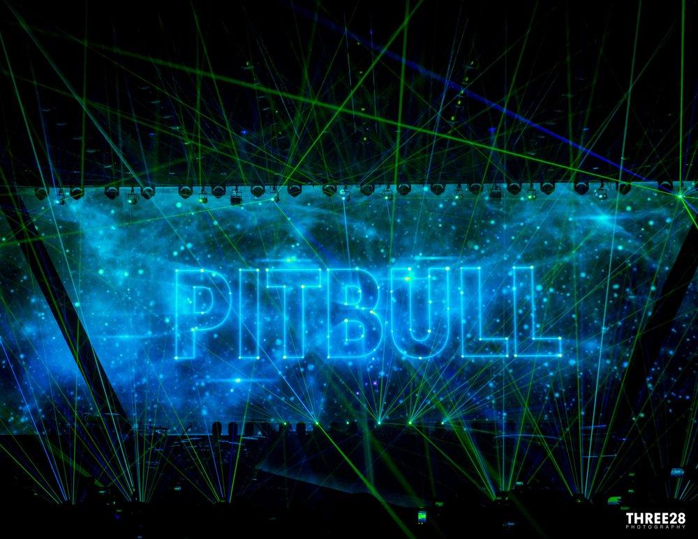 Pitbull Live