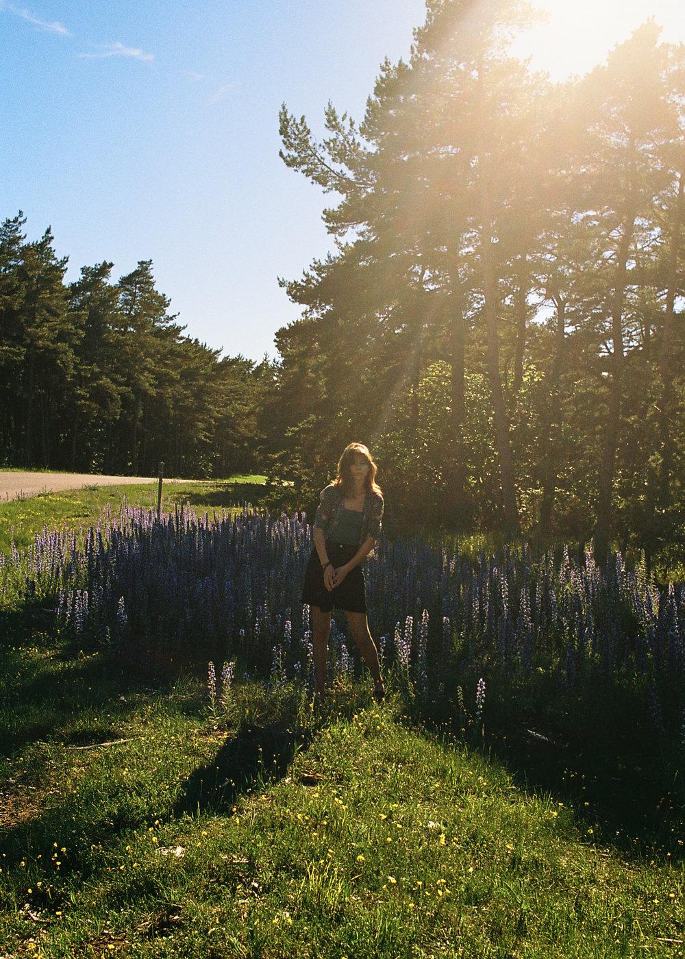 Gotland, 2017