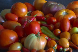 1027502_tomatoes_and_peppers