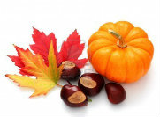 3226015-autunno-decorazione-da-zucca-colorfull-foglie-e-castagne