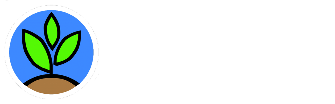 The Sprout Experience