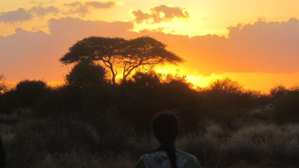 06 Amboseli Camp - 39.jpgFire burning Acacia