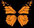 Papillon Single.png