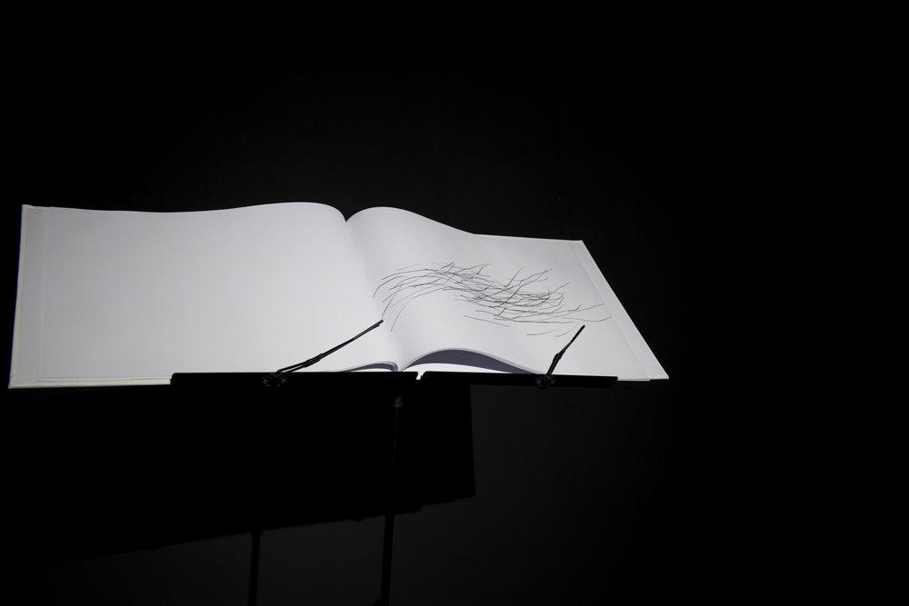 Libreto   2017,libreto, black&white, 25 pages, scanned automatic draws