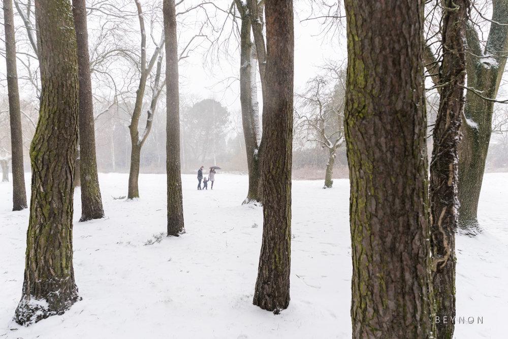 Walk in the snow at Malvern & Brueton Park