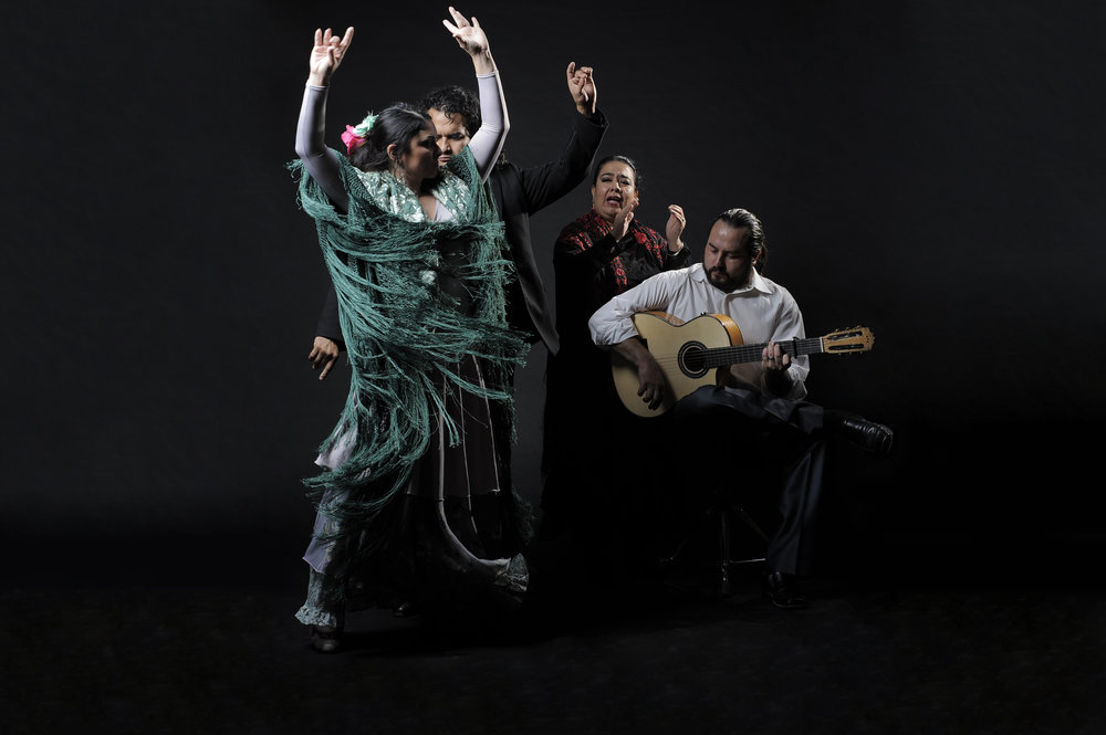Ida y Vuelta Flamenco.jpg