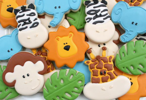 Safari Cookies