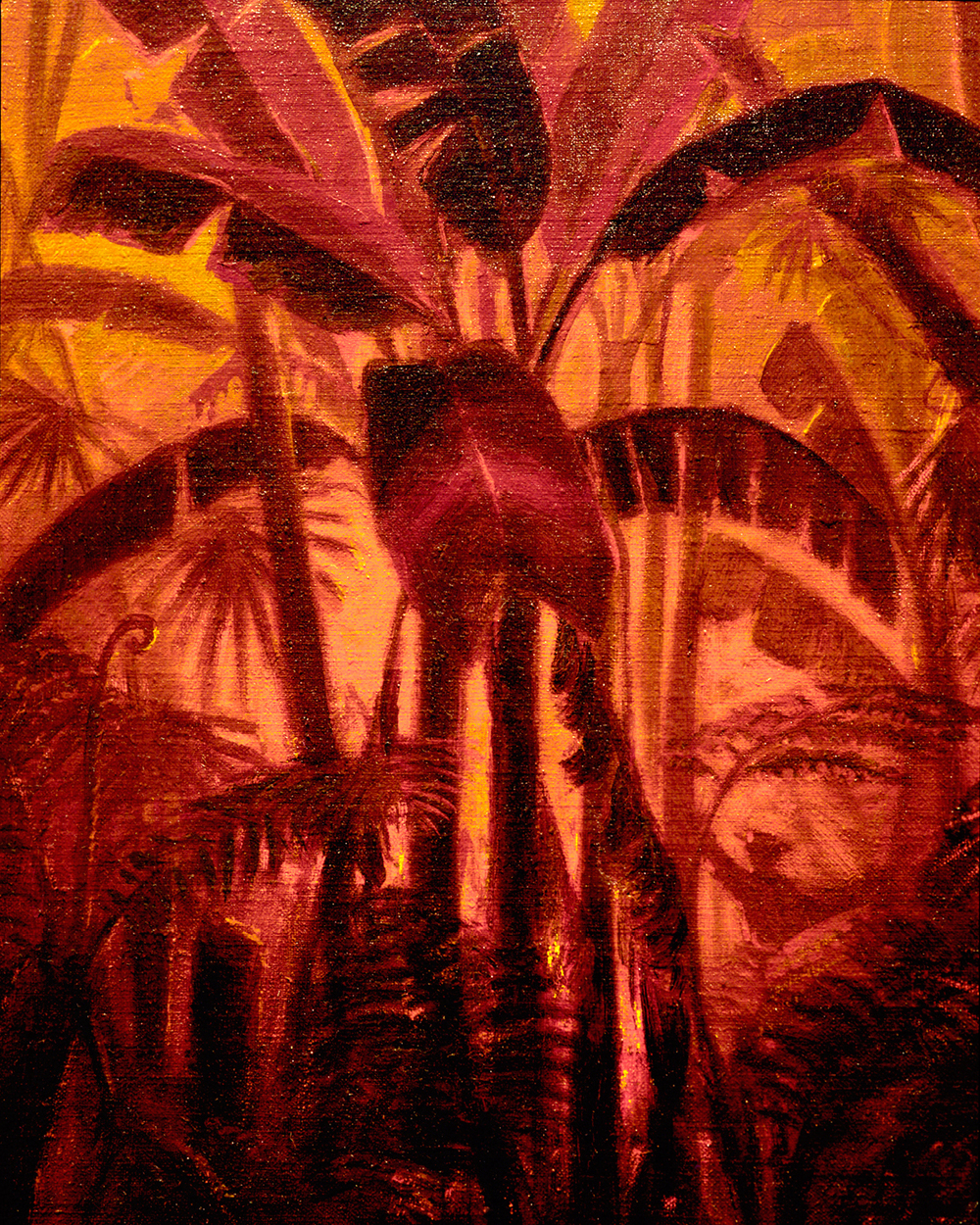 FIERY PALMS SEEN AT THE HONOLULU MUSEUM OF ART
