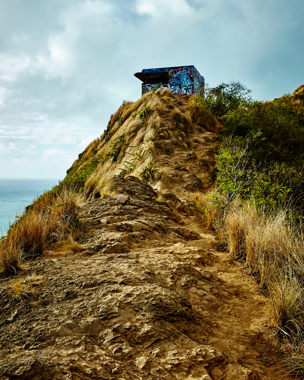 PILLBOX HIKE TRAIL