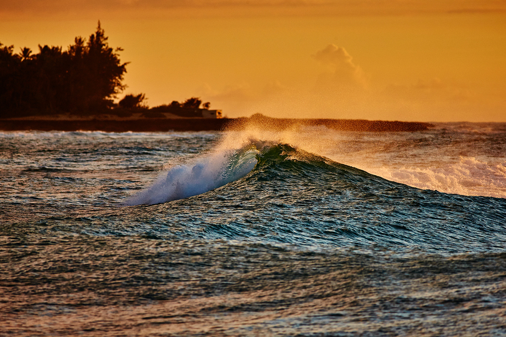 WAVES AT TURTLE BAY
