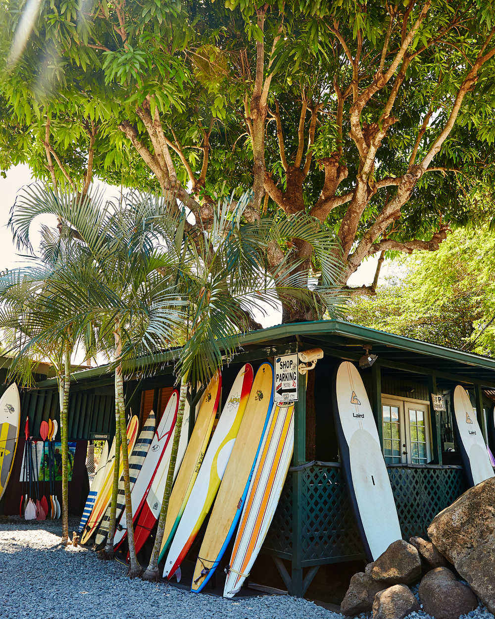 TROPICAL RUSH SURF CO.