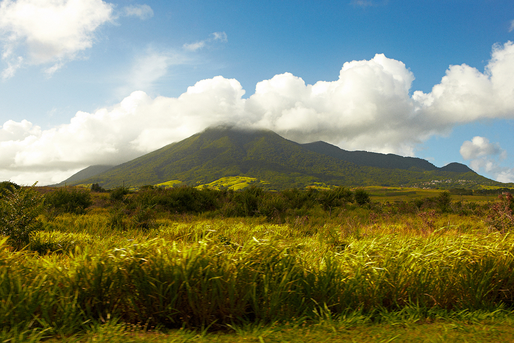 SUGAR CANE FIELDS WITH THE STRATOVOLCANO MOUNT LIAMUIGA IN THE CLOUDS