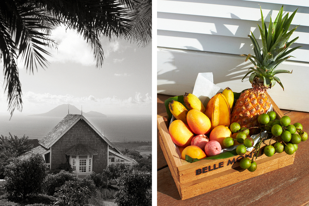 BELLE MONT FARMS, KITTITIAN HILL