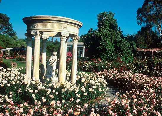 Pasadena Rose Tea Garden