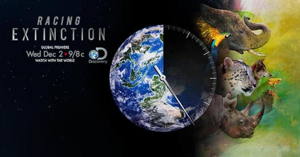 HALF of Earth's species may disappear in 100 yrs. Watch #RacingExtinction tonight on Discovery & #StartWith1Thing  http://thndr.me/QkY0IG