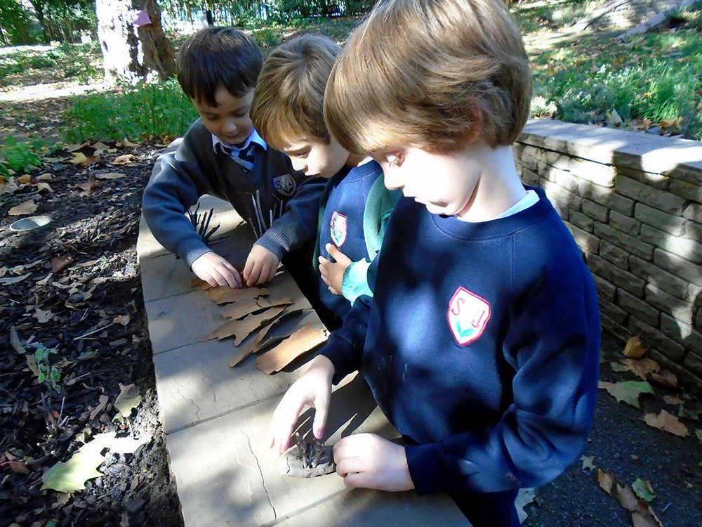 DSC01191 forest school Jack & friends.jpg