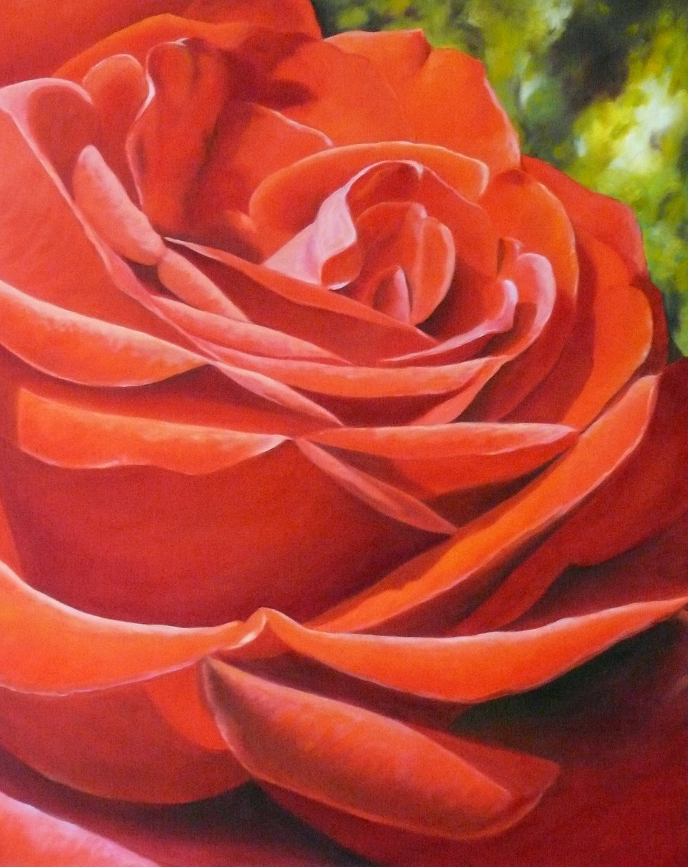 Red Rose by Patty Benson