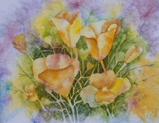 Poppies by Judy Rice