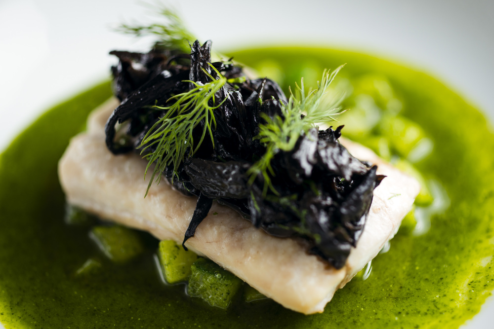 East Coast Halibut, Cucumbers, Dill, Black Trumpet Mushrooms