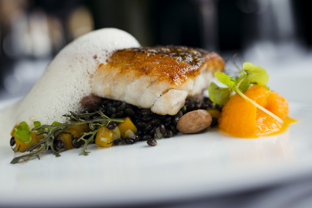 Black Sea Bass, Lentils, White Beans, Butternut Squash
