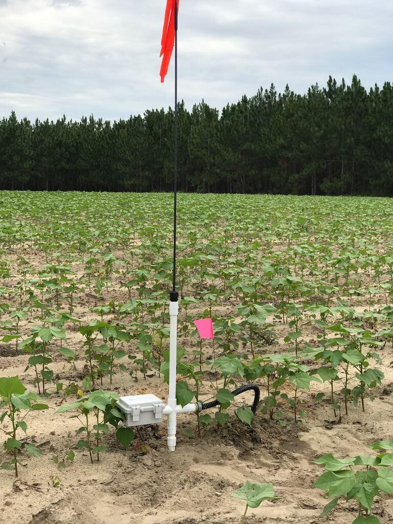 Wireless Sensor Station - Sensor stations record soil moisture & temperature data