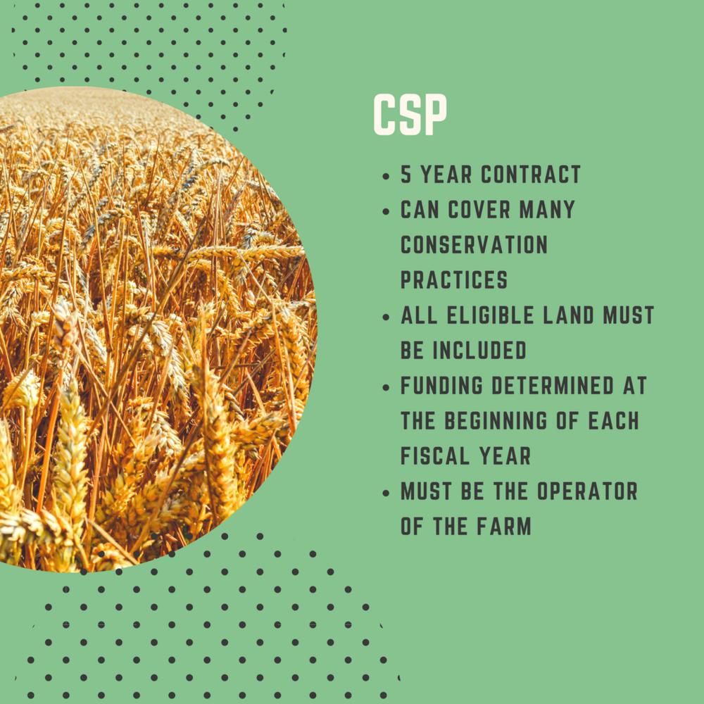 CSP Program Overview
