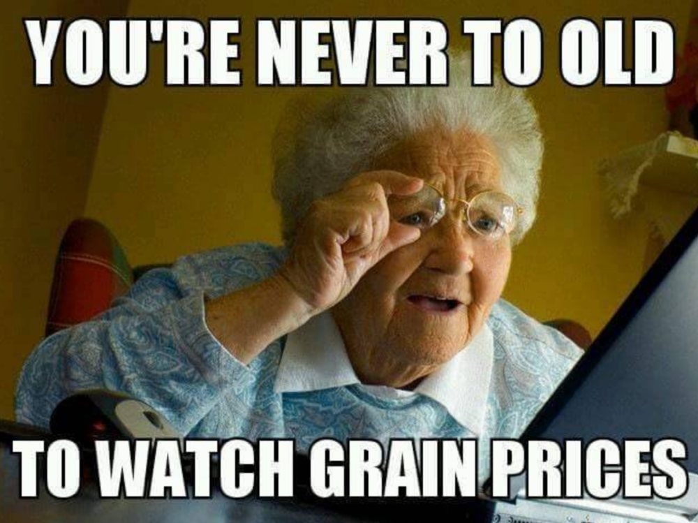 Credit:  farmingmemesblog.tumblr.com