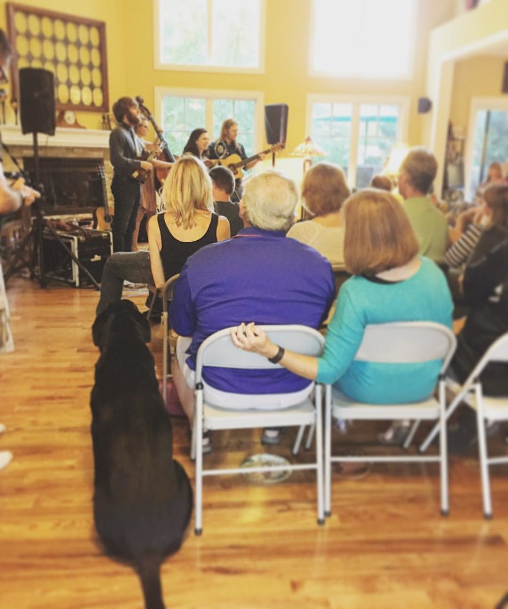 Barefoot music is for peoples and pups alike.
